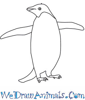 How to Draw an Adelie Penguin in 8 Easy Steps