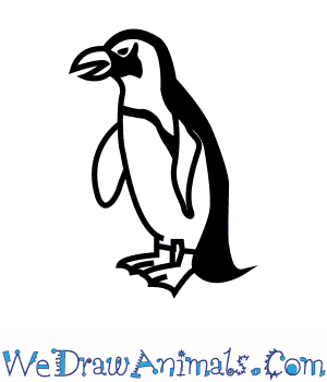 How to Draw an African Penguin in 7 Easy Steps