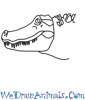 How to Draw an Alligator Head in 6 Easy Steps