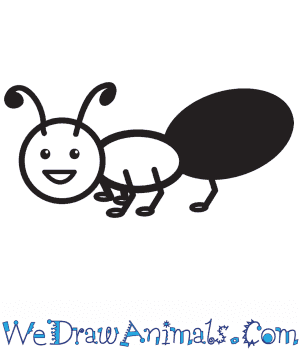 How to Draw an Ant For Kids in 6 Easy Steps