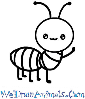 How to Draw a Baby Ant in 3 Easy Steps