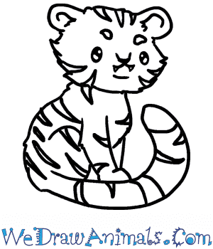 How to Draw a Baby Bengal Tiger in 6 Easy Steps