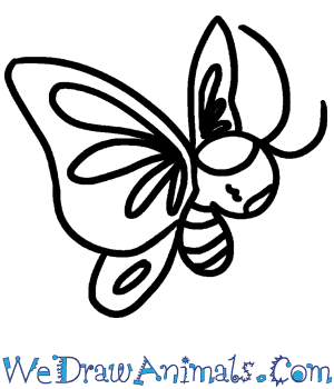 How to Draw a Baby Butterfly in 4 Easy Steps