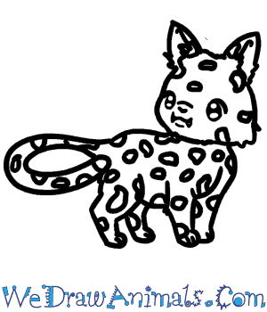 How to Draw a Baby Cheetah in 6 Easy Steps