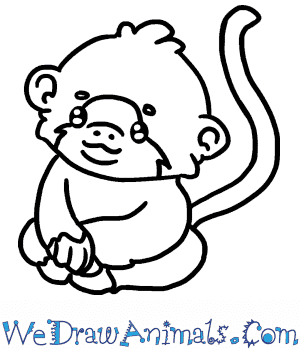 How to Draw a Baby Chimpanzee in 5 Easy Steps