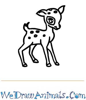 How to Draw a Baby Deer in 6 Easy Steps