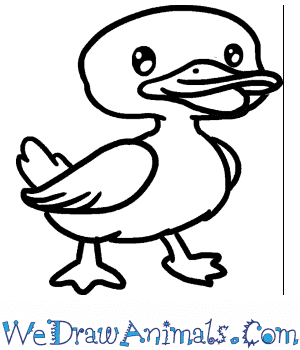 How to Draw a Baby Duck in 5 Easy Steps