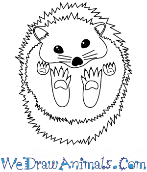 How to Draw a Baby Hedgehog in 8 Easy Steps