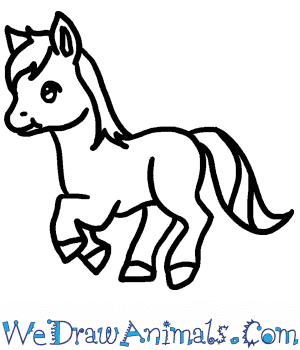 How to Draw a Baby Horse in 5 Easy Steps