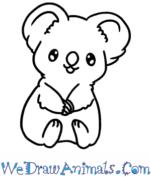 How to Draw a Baby Koala in 5 Easy Steps