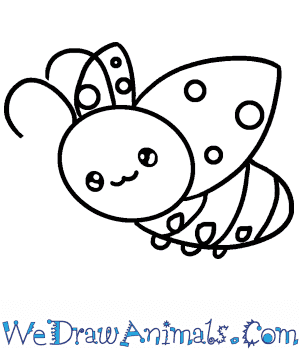 How to Draw a Baby Ladybug in 4 Easy Steps