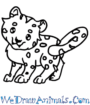 How to Draw a Baby Leopard in 6 Easy Steps