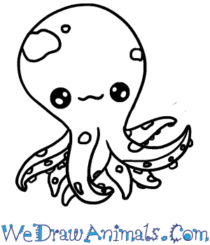 How to Draw a Baby Octopus in 4 Easy Steps