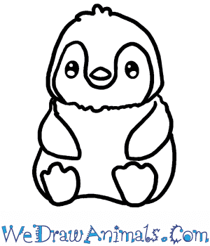 How to Draw a Baby Penguin in 3 Easy Steps