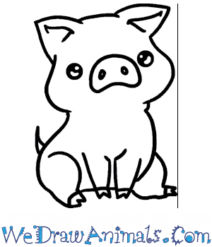 How to Draw a Baby Pig in 6 Easy Steps