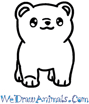 How to Draw a Baby Polar Bear in 4 Easy Steps