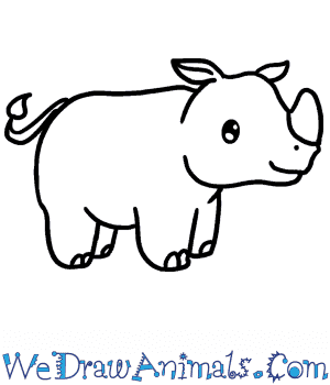 How to Draw a Baby Rhino in 5 Easy Steps