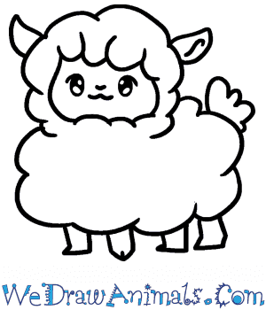 How to Draw a Baby Sheep in 5 Easy Steps