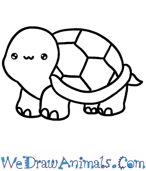 How To Draw A Baby Turtle