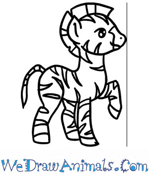 How to Draw a Baby Zebra in 6 Easy Steps