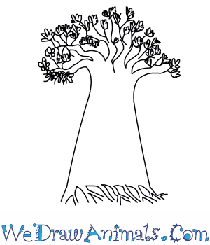 How to Draw a Baobab Tree in 5 Easy Steps