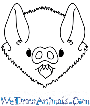 How to Draw a Bat Face in 8 Easy Steps