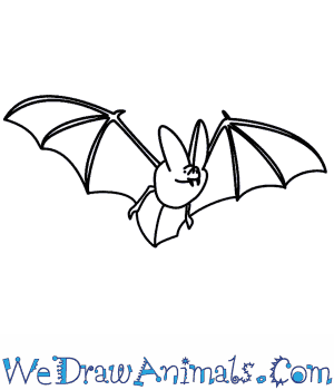 How to Draw a Bat in 12 Easy Steps