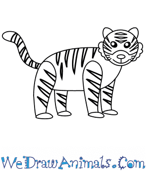How to Draw a Bengal Tiger For Kids in 6 Easy Steps