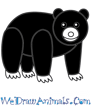 How to Draw a Black Bear For Kids in 6 Easy Steps