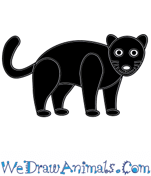 How to Draw a Black Panther For Kids in 6 Easy Steps