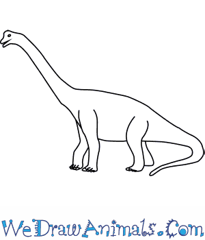 How to Draw a Brachiosaurus in 6 Easy Steps