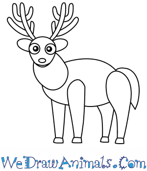 How to Draw a Buck Deer For Kids in 6 Easy Steps