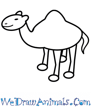 How to Draw a Camel For Kids in 6 Easy Steps