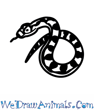 How to Draw a Carpet Python in 3 Easy Steps