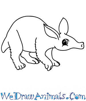 How to Draw a Cartoon Aardvark in 7 Easy Steps