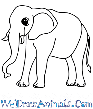 How to Draw a Cartoon African Elephant in 7 Easy Steps