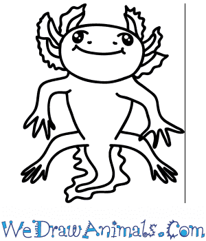 How to Draw a Cartoon Axolotl in 6 Easy Steps