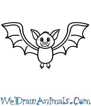How to Draw a Cartoon Bat in 8 Easy Steps