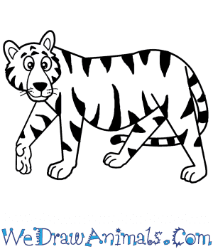 How to Draw a Cartoon Bengal Tiger in 7 Easy Steps