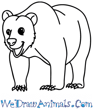 How to Draw a Cartoon Brown Bear in 8 Easy Steps
