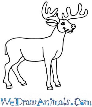How to Draw a Cartoon Buck Deer in 8 Easy Steps