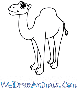How to Draw a Cartoon Camel in 7 Easy Steps