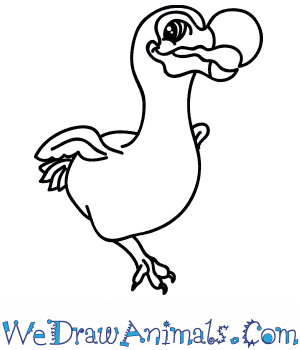 How to Draw a Cartoon Dodo in 6 Easy Steps