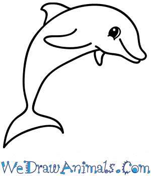 How To Draw A Cartoon Dolphin