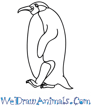 How to Draw a Cartoon Emperor Penguin in 7 Easy Steps