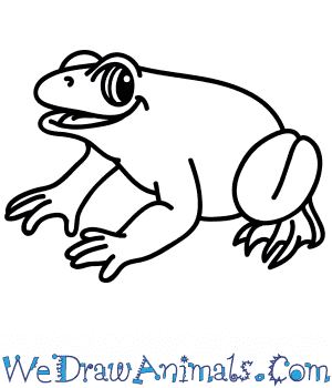 How to Draw a Cartoon Frog in 6 Easy Steps