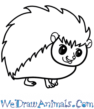 How to Draw a Cartoon Hedgehog in 7 Easy Steps