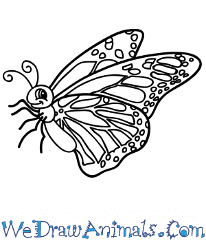 How to Draw a Cartoon Monarch Butterfly in 6 Easy Steps