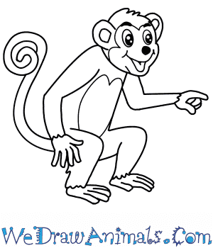 How to Draw a Cartoon Monkey in 6 Easy Steps