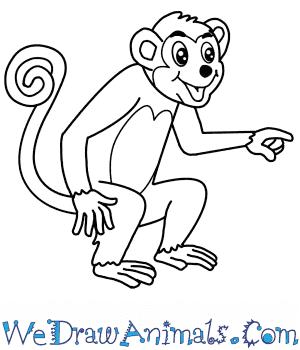 how to draw a cartoon monkey how to draw a cartoon monkey